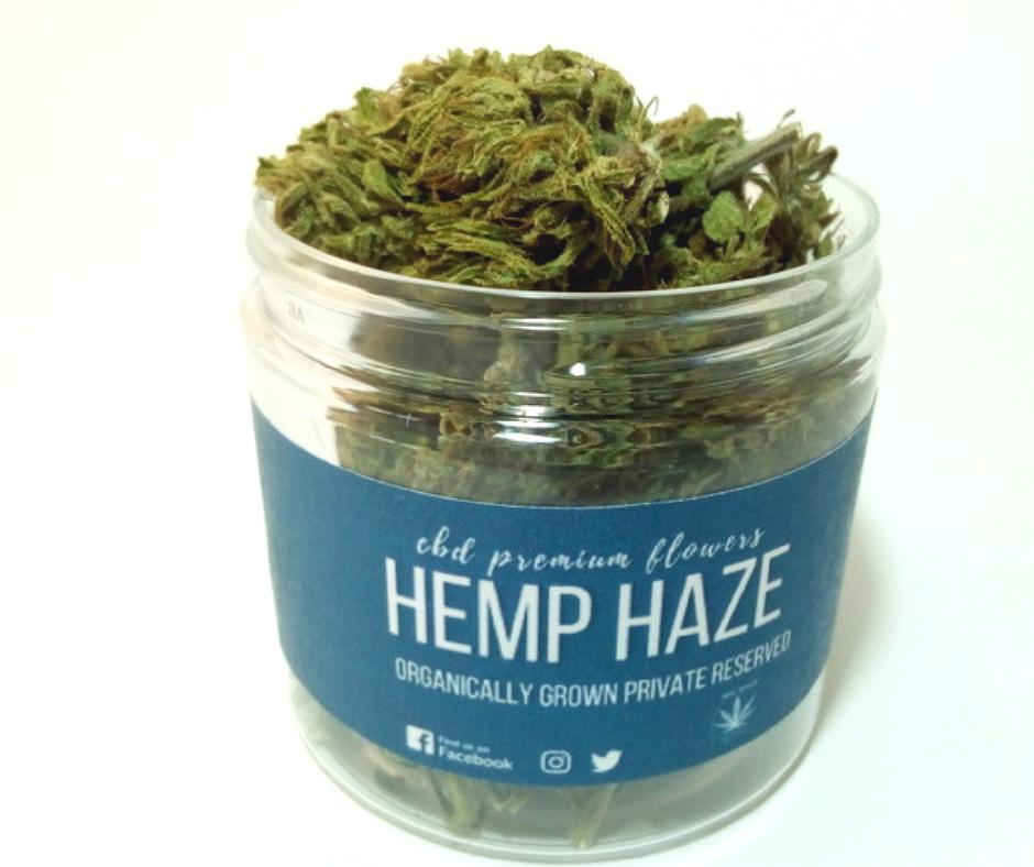 Hemp Haze 7g květy Hemp Yourself (Dostupnost 14 dní)